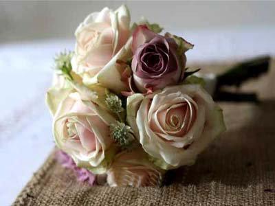 langage et signification des fleurs - rose